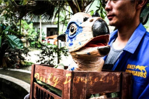 Dinosaur Stygimoloch Crate Puppet Blue Spot3