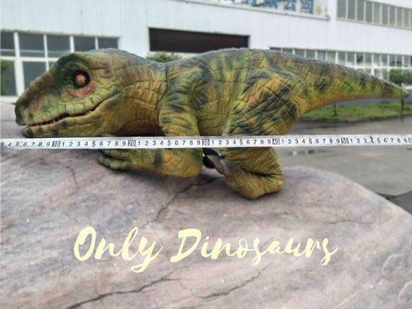 Green Baby Raptor Mini Puppet for Kids2