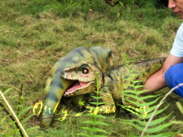 Green Baby Raptor Mini Puppet for Kids3