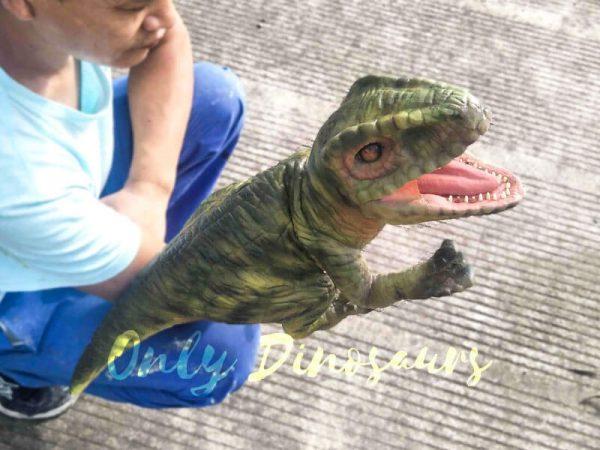 Green Baby Raptor Mini Puppet for Kids7