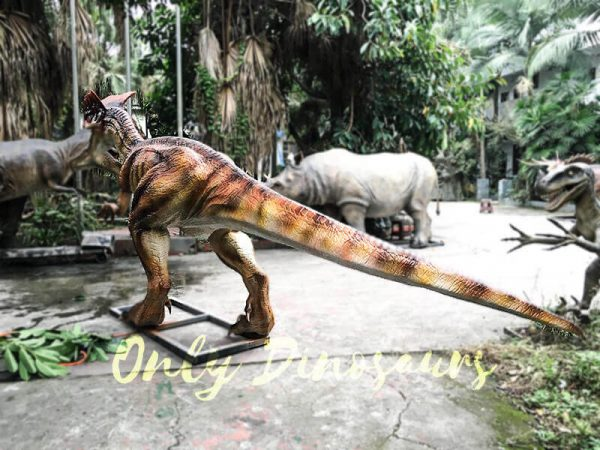 Horror Animatronics Dilophosaurus for Jurassic Adventure4