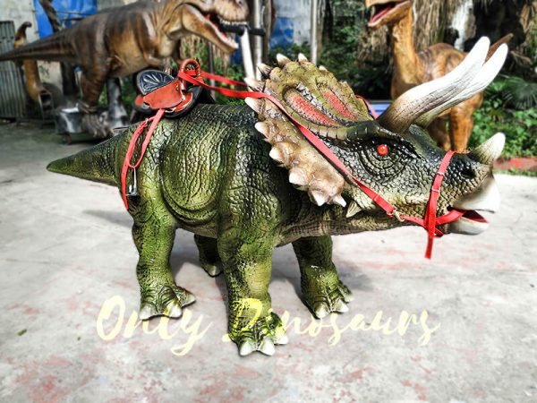Indoor Amusement Rides for sale Triceratops1