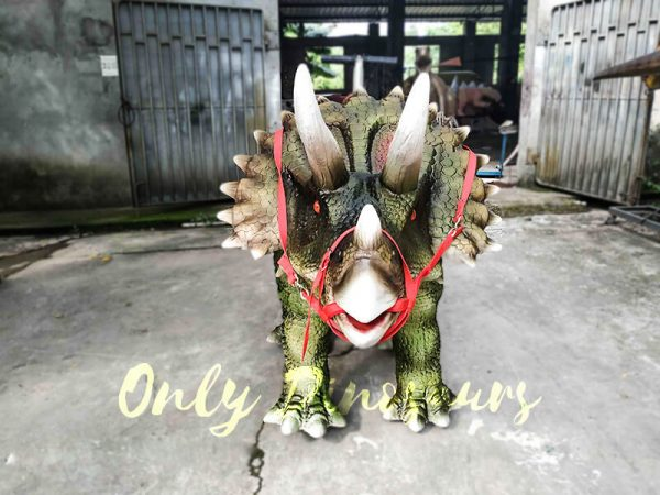 Indoor Amusement Rides for sale Triceratops2