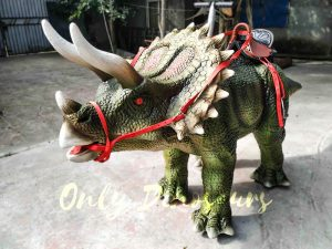 Indoor Amusement Rides for sale Triceratops