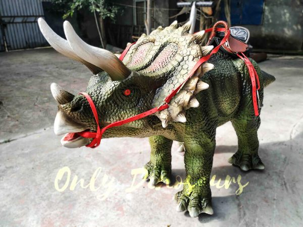 Indoor Amusement Rides for sale Triceratops3