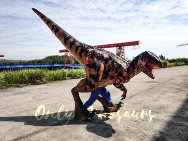 Jurassic Park Raptor Costume for Actor2