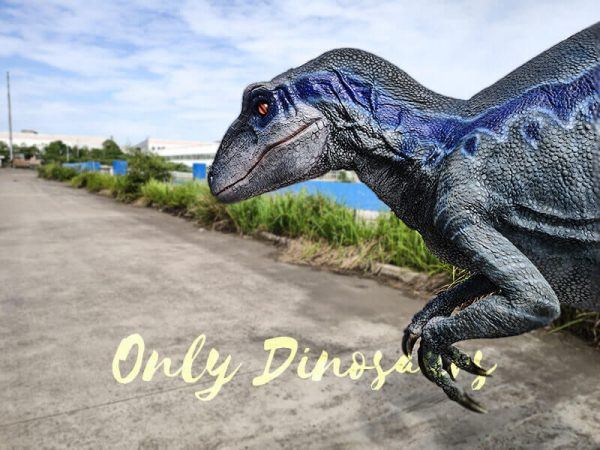 Jurassic Park Velociraptor Costume Lifelike Blue2
