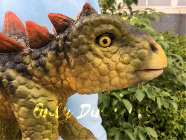 Kid Stegosaurus Dino Puppets in Stage Show9