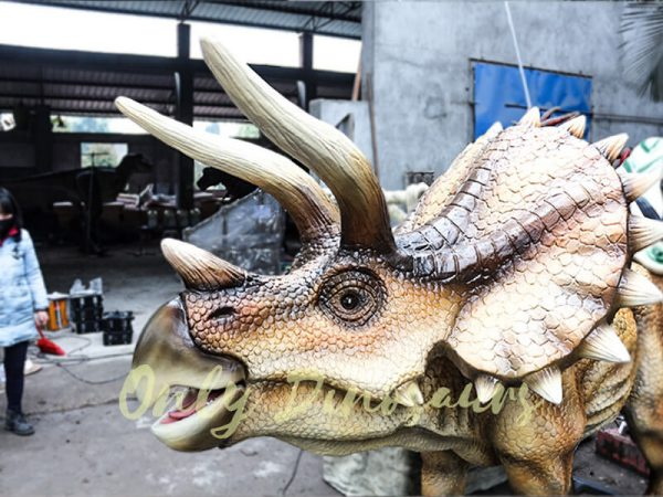 Kids Ride on Dinosaur Entertainment for sale2