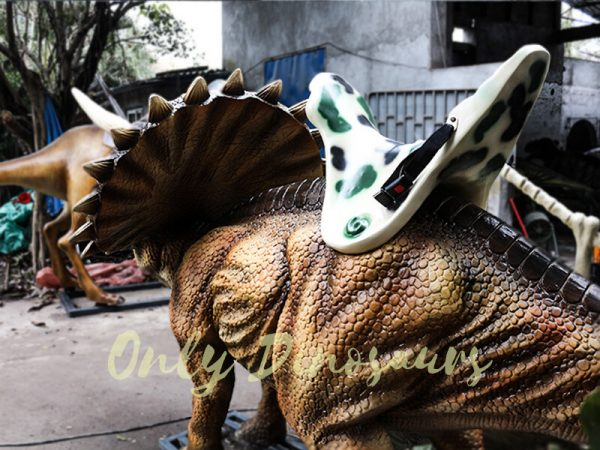 Kids Ride on Dinosaur Entertainment for sale4