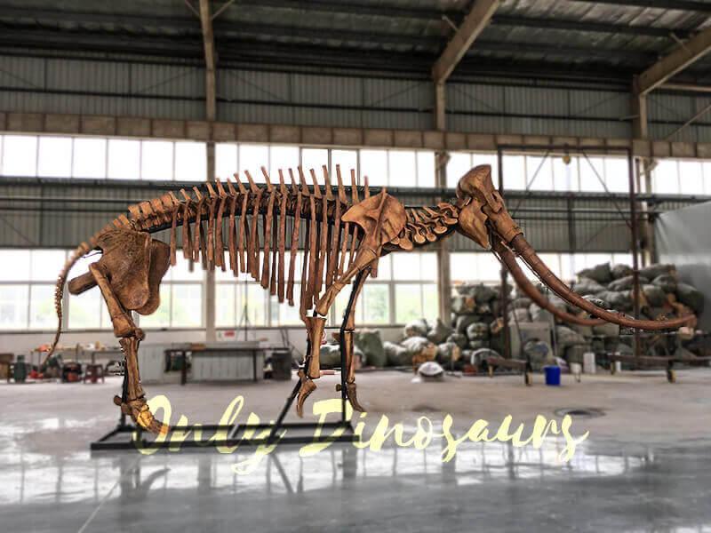 Lifesize Palaeoloxodon namadicus Skeleton for Museum1