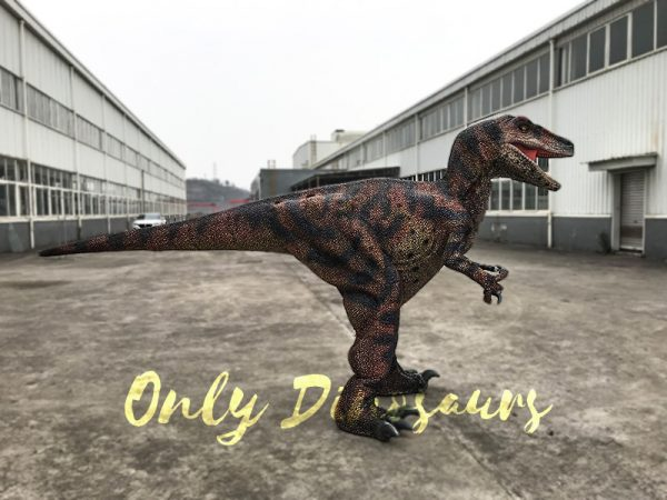Velociraptor Costume with lifelike Eyes5