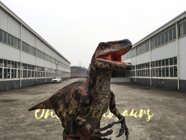 Velociraptor Costume with lifelike Eyes6