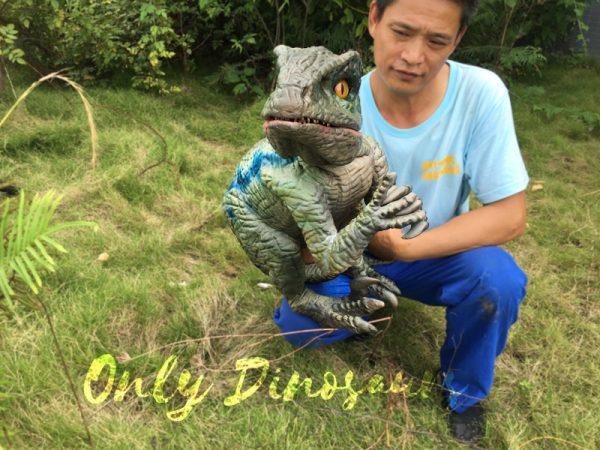 Little-Velociraptor-Puppet-For-Baby-Entertainment2-1
