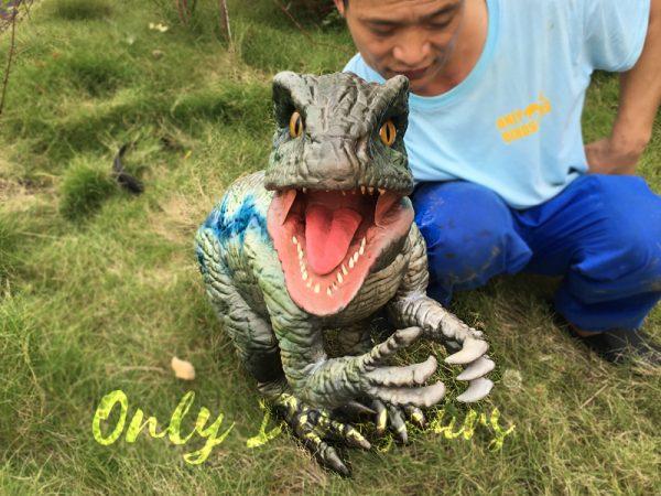 Little-Velociraptor-Puppet-For-Baby-Entertainment3-1