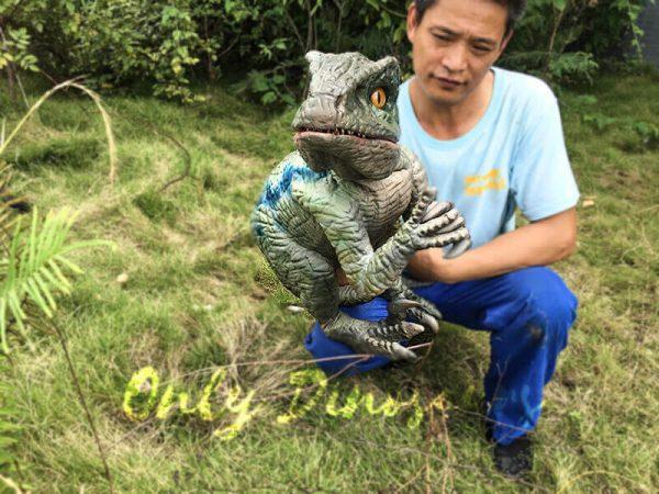 Little Velociraptor Puppet for Baby Entertainment2