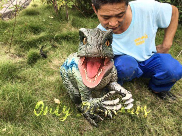 Little Velociraptor Puppet for Baby Entertainment4