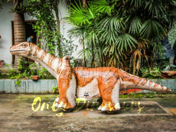 Orange Brontosaurus Dinosaur Kiddie Ride1