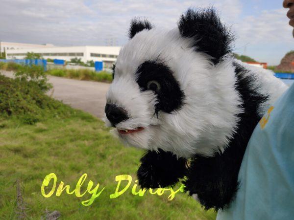 Panda-Baby-Hand-Puppet-For-Kids44-1