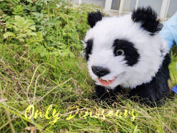 Panda-Baby-Hand-Puppet-For-Kids55-1