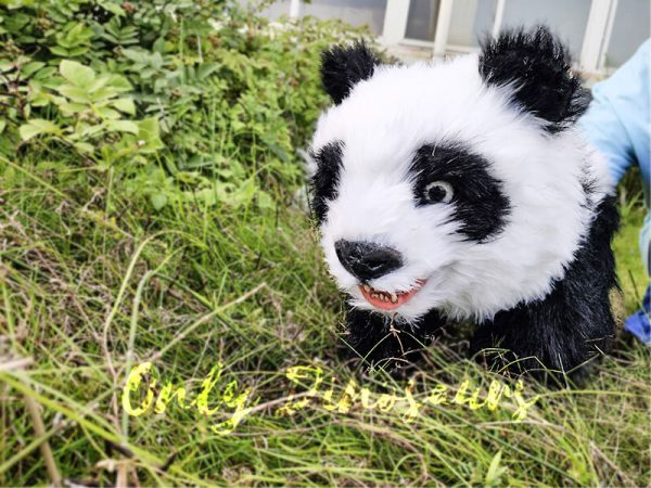 Panda Baby Hand Puppet for Kids7