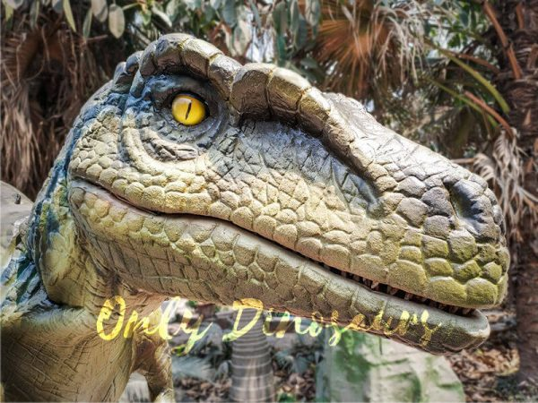 Raptor Dinosaur Cosplay Costume for Event4