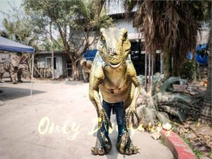 Raptor Dinosaur Cosplay Costume for Event