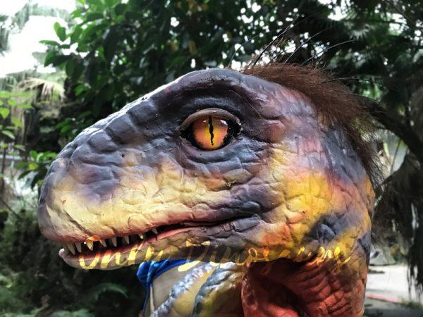 Raptor-Dinosaur-Glove-Puppet-Feathered-Puppet1-1