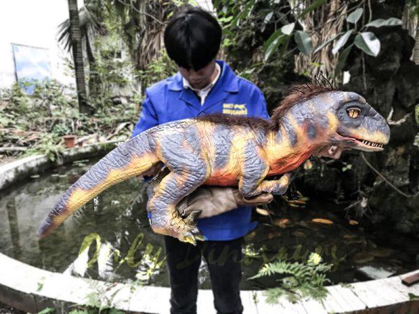 Raptor Dinosaur Glove Puppet Feathered Puppet1
