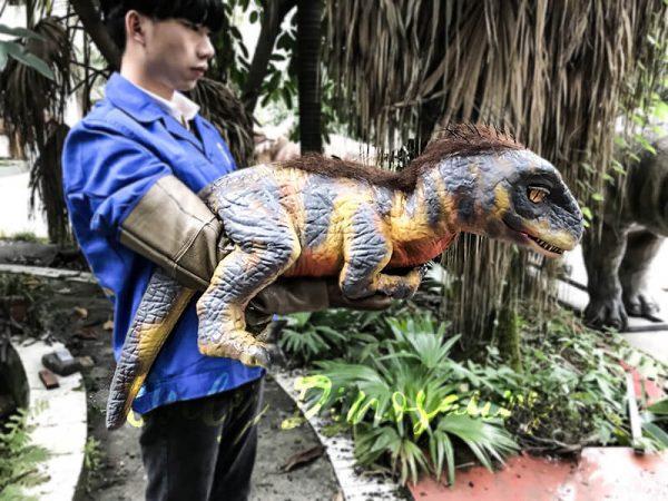 Raptor Dinosaur Glove Puppet Feathered Puppet3