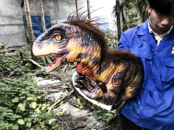 Raptor Dinosaur Glove Puppet Feathered Puppet4
