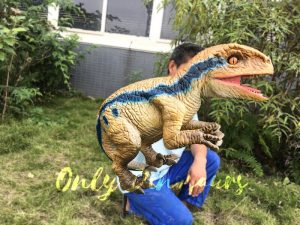 Raptor Lifesize Puppet for Arm Control