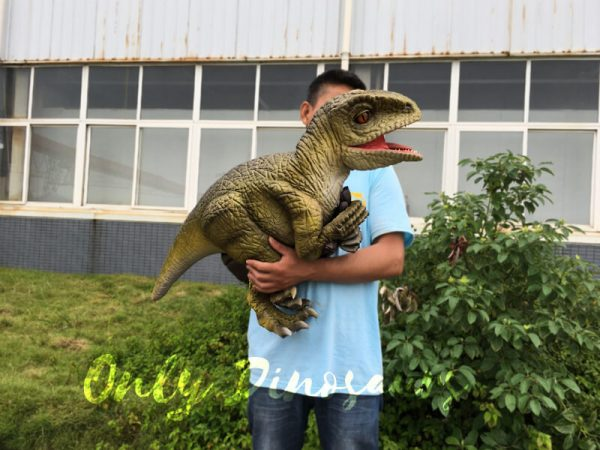 Raptor-Rubber-Puppets-for-Performance1-1