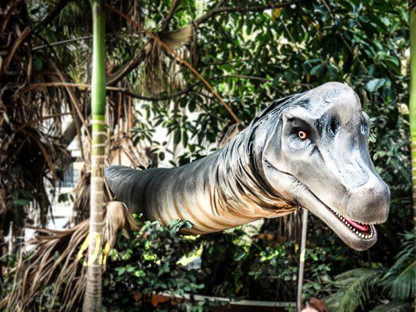 Realistic Brachiosaurus Dinosaur Head Prop1