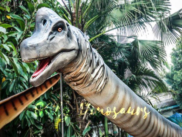 Realistic Brachiosaurus Dinosaur Head Prop4