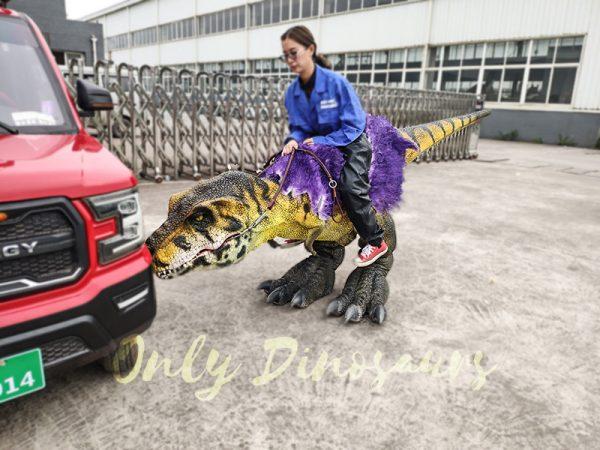 Realistic Child Dinosaur Ride On Costume1