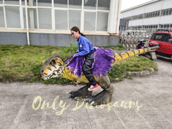Realistic Child Dinosaur Ride On Costume2