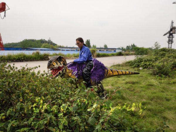 Realistic Child Dinosaur Ride On Costume6
