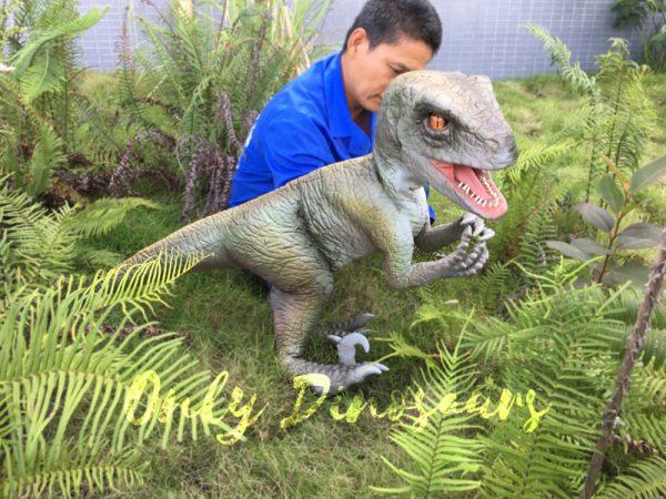 Realistic-Dinosaur-Puppet-Cowboy-Raptor-Baby5