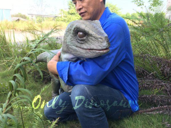 Realistic-Dinosaur-Puppet-Cowboy-Raptor-Baby6