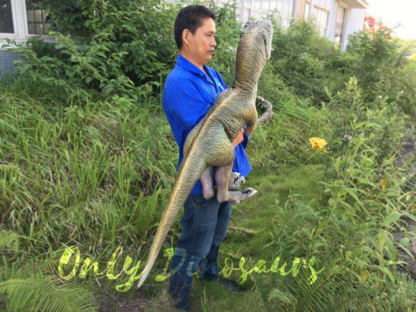 Realistic-Dinosaur-Puppet-Cowboy-Raptor-baby-3-3