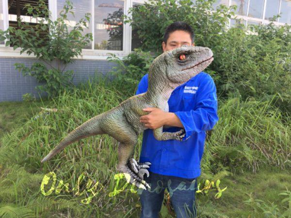 Realistic-Dinosaur-Puppet-Cowboy-Raptor-baby2-2