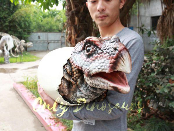 Realistic-Dinosaur-Puppet-Protoceratops-Kids-Gift2-1