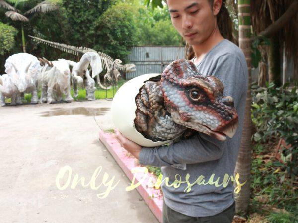 Realistic-Dinosaur-Puppet-Protoceratops-Kids-Gift5-1