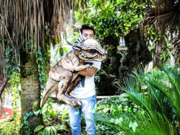 Realistic Dinosaur Stygimoloch Puppet Jurassic World3