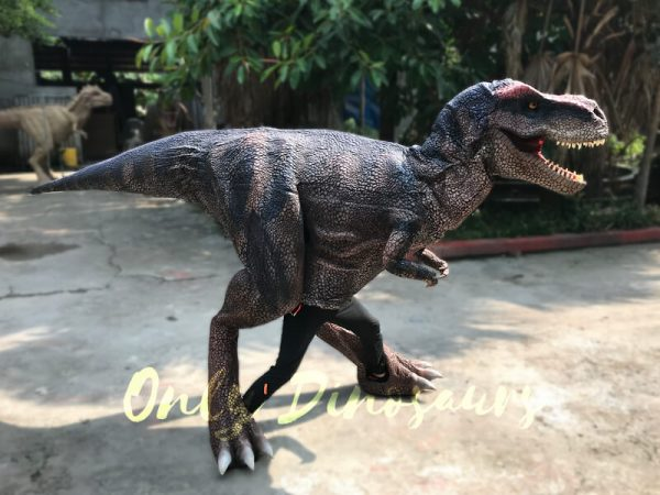 Realistic-Dinosaurs-TV-Show-T-rex-Costume4-1