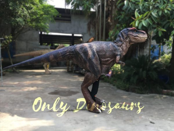 Realistic-Dinosaurs-TV-Show-T-rex-Costume6-1