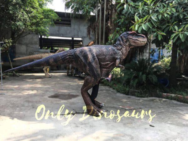 Realistic Dinosaurs TV Show T rex Costume6
