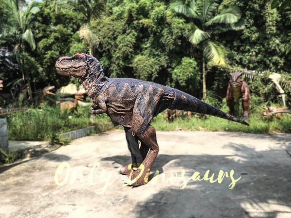 Realistic Dinosaurs TV Show T rex Costume7