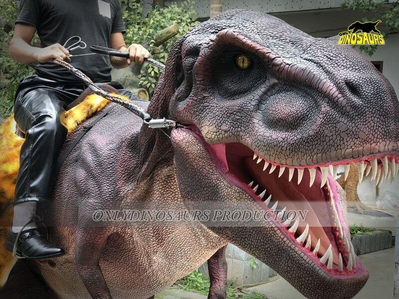 Realistic Riding Dinosaur Costume 2